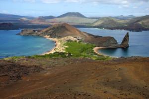 gps-isla-bartolome-paisaje_72