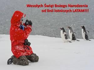 MIkołaj z pingwinami