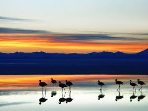 Sunset on the Uyuni salt desert, Bolivia